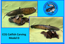 Catfish Carving Model D
