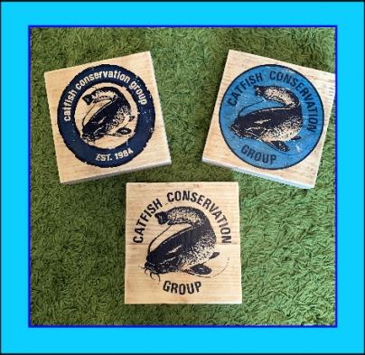 CCG Wood Logo Blocks